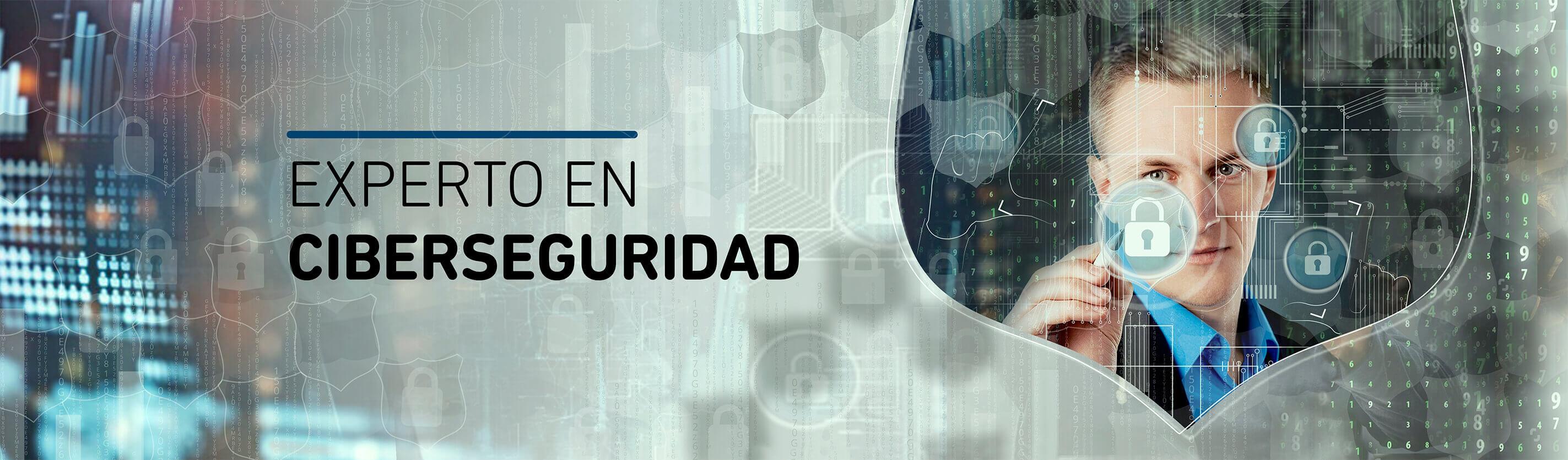 Experto en Ciberseguridad-CISDE