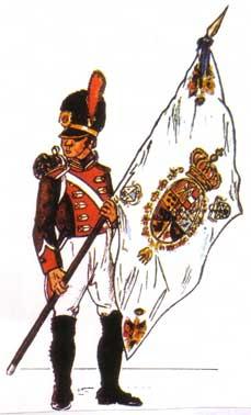 Batallón de Voluntarios de Honor Universidad de Toledo (abanderado)