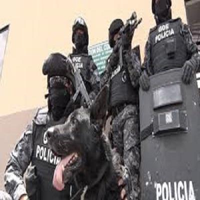 Binomios K9 en la Seguridad.