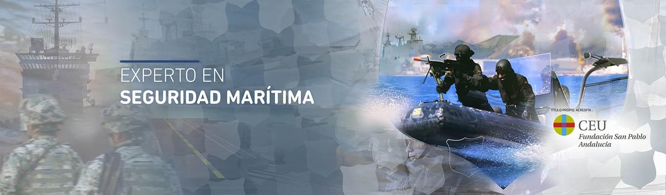 Experto en Seguridad Marítima